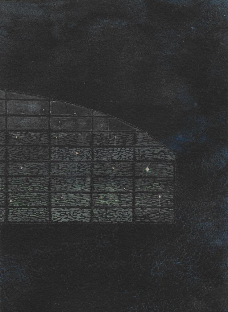 glasshouse night
